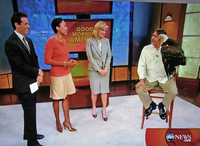 Al Cecere and Bald Eagle Challenger visit Good Morning America. Pictured with Al and Challenger are Diane Sawyer, Robin Roberts, and Chris Cuomo.