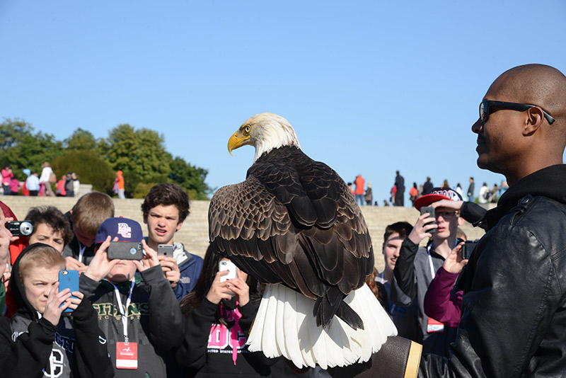 Christian Knatt, bird handler at the AEF, talks to a group of students about Bald Eagles and their role in the environment. World famous eagle Challenger acts as an ambassador for his species.