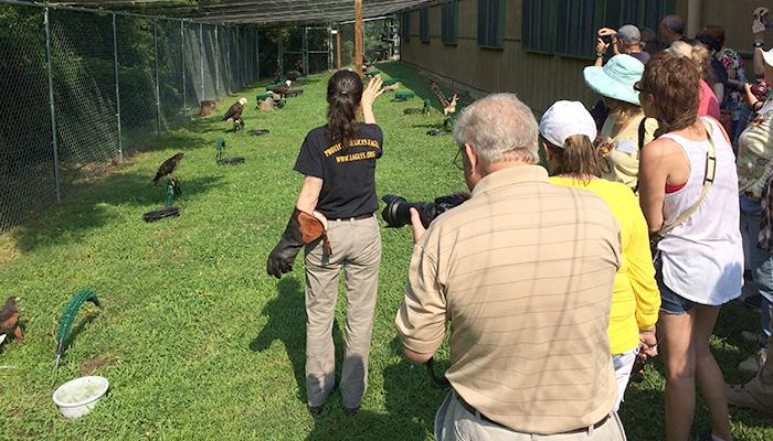AEF Education