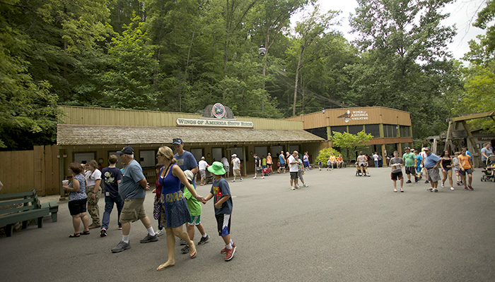 Wings of America at Dollywood
