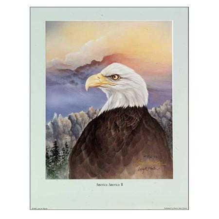 America America II