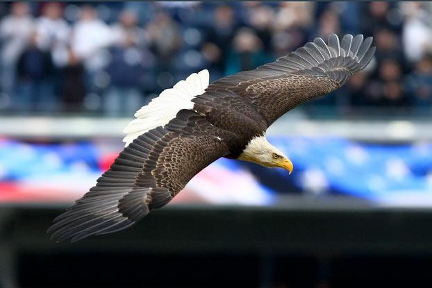 Challenger flies at Yankee Stadium.