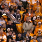 Challenger flies at Neyland Stadium