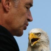 Delisting Bald Eagle