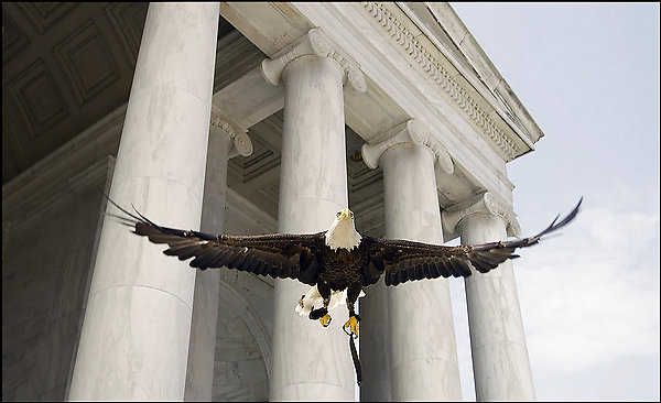 Challenger flies during ceremony that delisted Bald Eagle from threatened & endangered species list.
