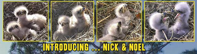 1-12-15-Nick-and-Noel