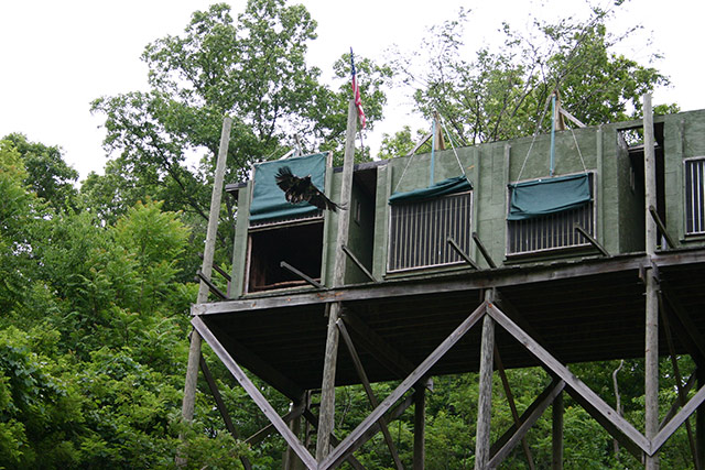 AEF Hack Tower on Douglas Lake in East Tennessee