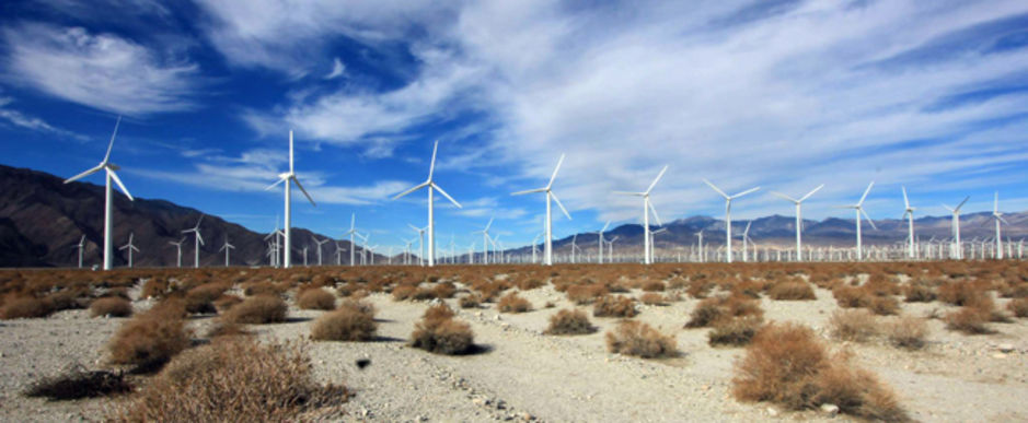 Wind turbine farms -cause deaths to tens of thousands of birds, including eagles.