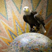 At Boy's Town in Omaha, Challenger has a photo op with the world's largest ball of stamps!