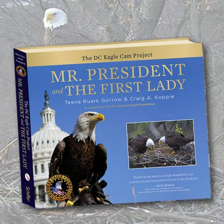 Mr. President & The First Lady Book