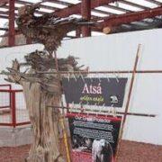 Tribal aviary