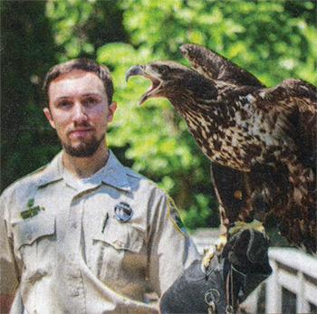 Rehabbed eagle at Radnor Lake