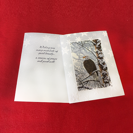 mi-246B Eagle Christmas Card