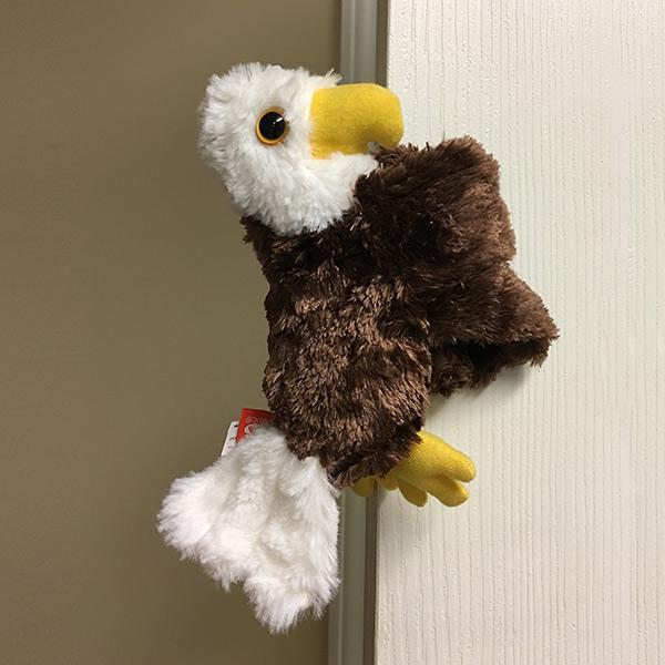 Bald Eagle Hugger American Eagle Foundation