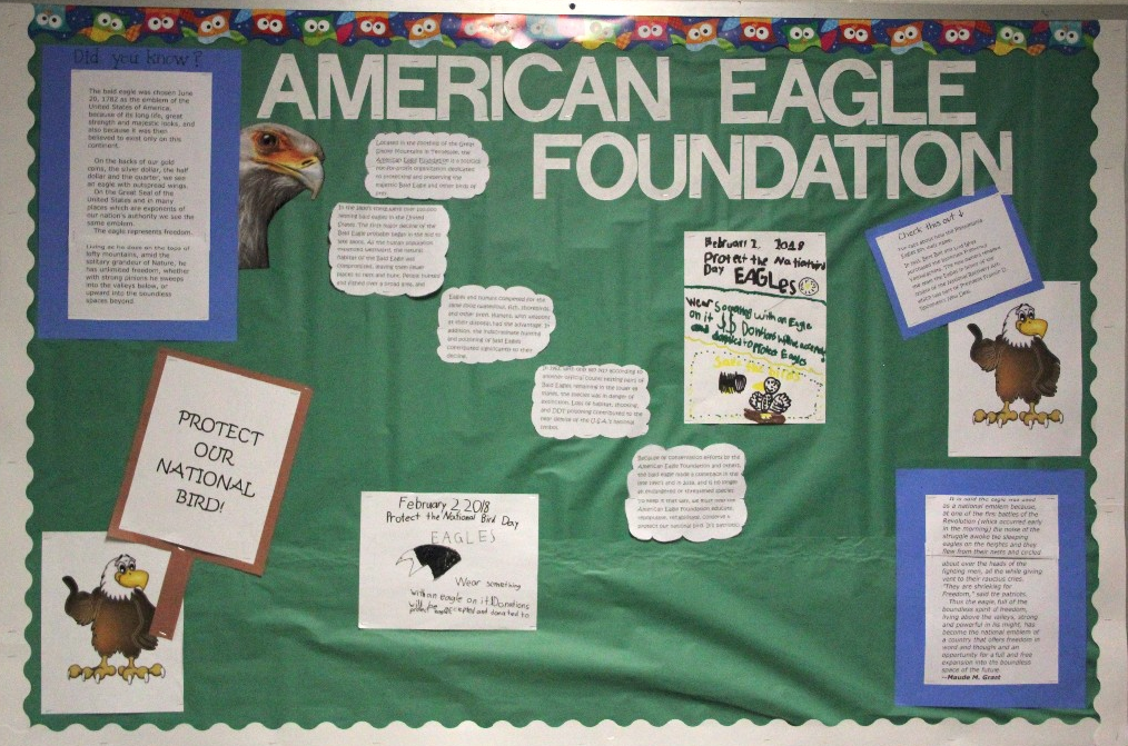 McKinley Students Raised Money for the American Eagle Foundation!