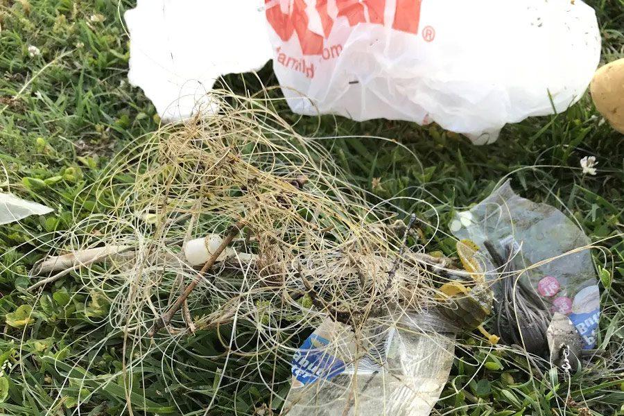 Trash left along the river threatens wildlife.