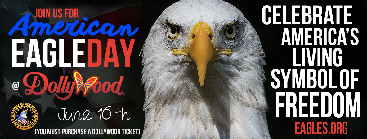 Join us for American Eagle Day 2018!